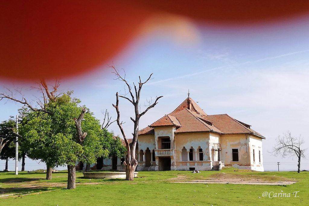 Un alt conac ce dispare încet, încet… Moţăţei, Dolj (România)